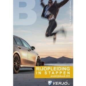 Praktijkboek RIS-methode